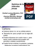 Cap 3  Biol 3101 (2012-01) CLM (V. est)