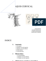 Trabajo de Raquis Cervical-Total (1)