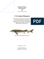 MBA Seafood Watch Farmed Sturgeon Report