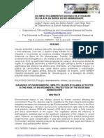 DIAGNÓSTICO DOS IMPACTOS AMBIENTAIS ADVINDO DE ATIVIDADES Rio Mamanguape