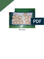 Gambar Carta Alir Ayam