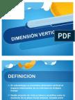 Dimensión vertical