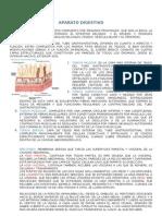 11 - APARATO DIGESTIVO