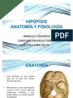 _Hipófisis.pptx_
