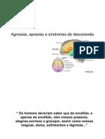 Agnosias, apraxias e síndromes de desconexão