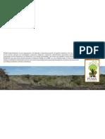 Misión de PUMA Fondo Ambiental