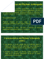 Phylum Arthropod A Completa