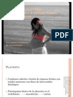 CIRCULACIÓN UTERO – PLACENTARIA E INTERCAMBIO RESPIRATORIO