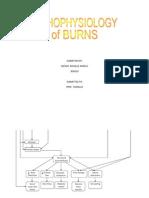 Burns patho