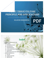 Plant Tissue Culture rajesh bhammar