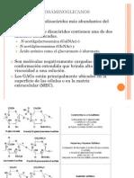 Estructura de Glicosaminoglicanos y Proteoglicanos