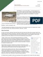 IRIN - Print Report