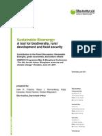 OEKO (2011) Sustainable Bioenergy Paper UNECSO Conf Final