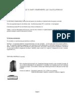 Proiect Info Componente Internet