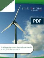 Huella de carbono y Gestión de emisiones MERCADOS DE CARBONO MÓDULO 3