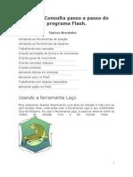Guia PP Flash
