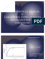 6 Caracteristicas Basicas Variograma