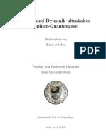 Benno Liebchen- Statik und Dynamik ultrakalter Spinor-Quantengase