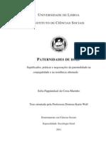 PATERNIDADES DE HOJE Significados, práticas e negociações da parentalidade na  conjugalidade e na residência alternad
