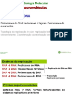 BM_T3_ReplicacaoAcidosNucleicos