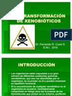 biotransformacion de xenobioticos