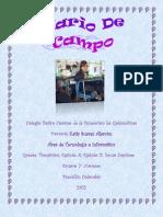 Diario de Campo Febrero PDF