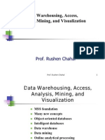 Data Warehousing, Access, Analysis, Mining, And Visualization