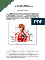 Sistema Respiratrio