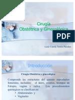 Instrumental Quirúrgico Obstetricia y ginecologia