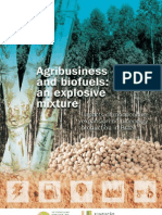 Agribusiness and Biofuels