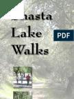 Shasta Lake Walks