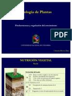 2011_02_Clase 11_Fitohormonas y Regulacion Del Crecimiento