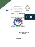 Disco Bilaminar (2008(