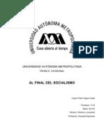 Al Final Del Socialismo (Resumen)