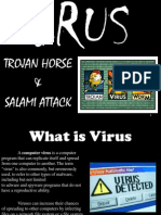 SO2 Virus(Trojan Horse & SALami Attack)