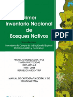 Pinbn Anexo Manual Cartografia Sig