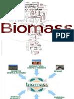 Biomass Final