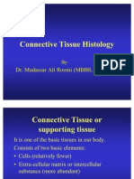 1st Lec of Connective Tissue for 1st Year Mbbs by Dr Roomi