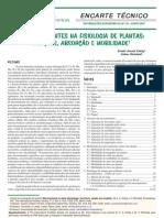 metabolismo da planta