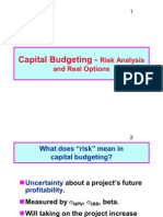 Session 7 Risk Analysis