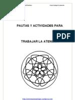 Pautas y Actividades Para Trabajar La Atencic3b3n