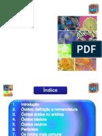 24-xidos-2-1216605956716891-8[1]