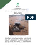 PS _ Informe Censat Agua Viva