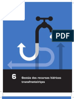 Manejo de Recursos Hídricos - Gestão de Recursos Hídricos Transfronteiriços