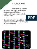 Sintesis de Polisacaridos Capsula y Microosganismos Capsulares