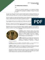 Historia de Los Pavimentos en Mexico