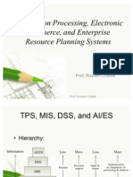 Transaction Processing, Electronic Commerce, And Enterprise Resource Planning Systems
