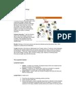 Anatomy and Physiology SLE