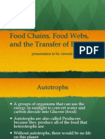 Food Chains, Food Webs, And The