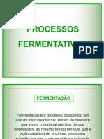 6256_processos fermentativos